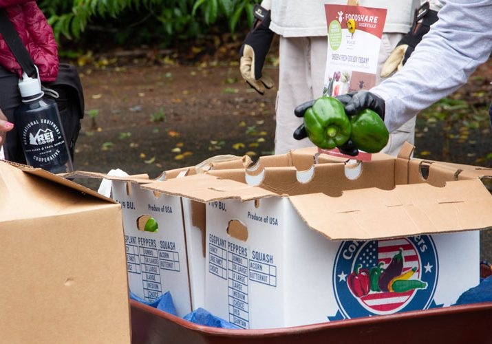 packing-produce-in-boxes-ready-to-ship